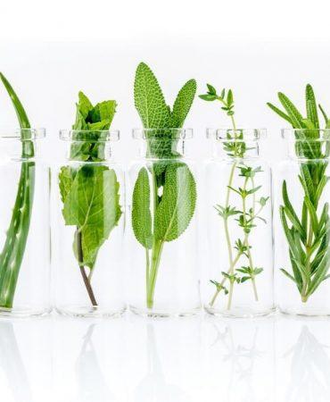 aromaterapi-tisserand-esansiyel-yaglar-organik-saf